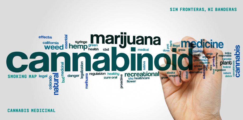Vías de administración y dosificación del cannabis terapéutico