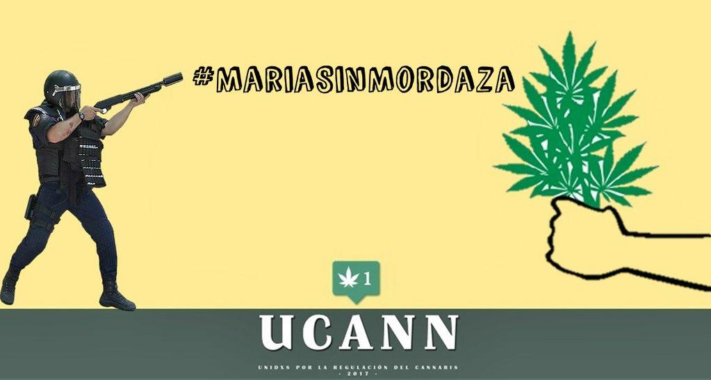 Tenencia lícita: Unidxs por la regulación del cannabis.