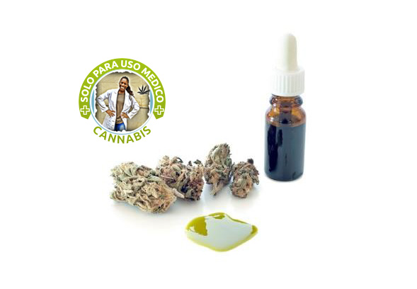 Tintura de cannabis Green Dragon. Doctora Sarah Chinelo