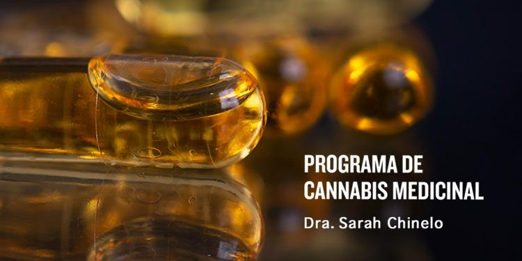 Cápsulas de Aceite de Cannabis de Grado Médico y Altamente Biodisponible
