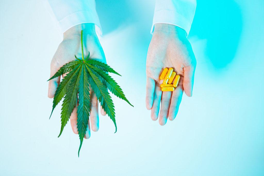 Clasificación de los cannabinoides y medicamentos que se pueden sustituir